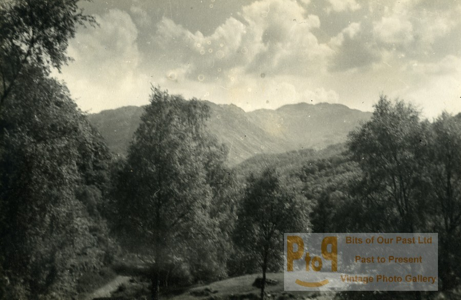 Borrowdale Valley United Kingdom  city photos : England Lake District Borrowdale Valley Forest Old Amateur Photo 1930