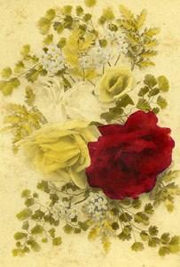 Flowers Still Life USA Old CDV Photo 1870