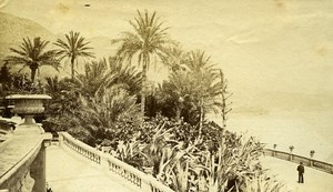 Monte Carlo Casino Gardens France Old CDV Photo 1890