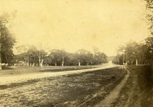 Landscape Fontainebleau France Old Photo 1865