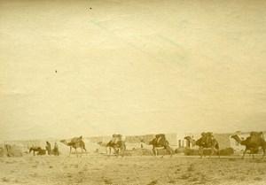 Morocco Rif War Ouezzan Camel Caravan Old Snapshot Photo 1925