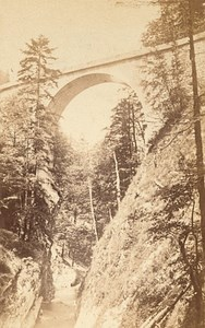 Grande Chartreuse St Bruno Bridge Alps CDV Photo 1865