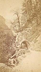 Way to Grande Chartreuse Alps Old CDV Photo 1865