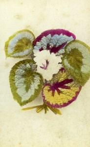 United Kingdom Happy Birthday Card Flower Old CDV Photo 1880