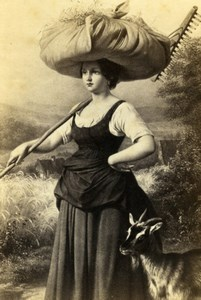 Germany Reaper Girl with goat by Meyerheim Schauer CDV Photo of Painting 1865