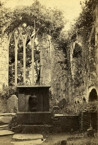 Ireland Killarney Muckross Abbey Ruins Old CDV Photo 1865