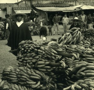 South America Ecuador Market Scene Bananas Old Photo Beauvais 1960
