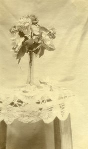France Raismes portrait study Flowers Still life Old Photo Capin 1933
