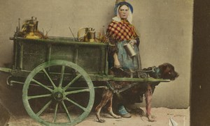 Belgium? Milk woman seller dog cart Old CDV Photo 1870