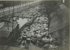France Paris Inondations de 1910 Floods Seine River Wine Barrels Old Photo
