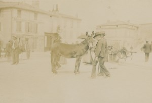 Market animated scene Angouleme old Billard Photo 1893