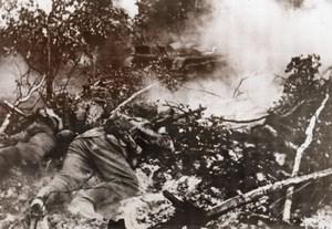 WWII German Soldiers Crawl Forest Tank WW2 Photo 1941