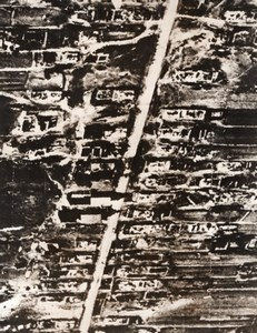WWII Aerial View Luzki Russia Ruins WW2 old Photo 1941