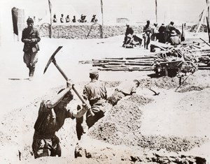 WWII Captured Germans Digging Trench WW2 old Photo 1941
