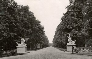 Dresden Castle Garden Statue Antique Collotype Photo
