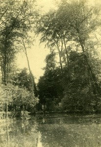 Romantic study, Tahiti river old Photo 1910'