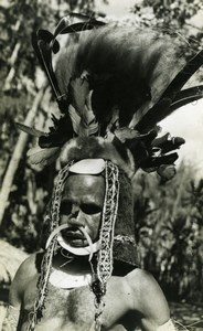 Native Man with feather head-dress New Guinea old Photo
