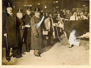 King George at Smithfield Cattle Show old Photo 1930