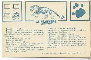 1930' Scouting Boy Scouts Scout PC, Panther, Coze P.
