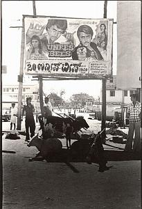 Cinema poster & cows India street scene old Photo 1970'