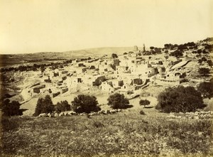 Bethanie, General view, Syria, old Bonfils Photo 1870'