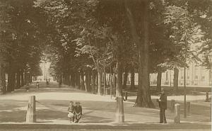 Boys & Man in Park Holland old Dutch Albumen Photo 1890