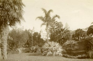 Monte Carlo Casino Garden France old Photo 1880'