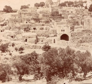 Bethanie Panorama Palestine old Stereo Photo 1900'