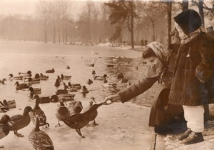 Duck Lunch Daumesnil Park Paris France old Photo 1955