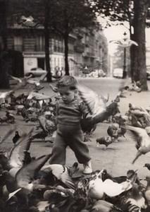 Pigeon bird group Young Boy Paris France old Photo 1953