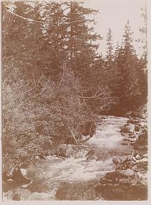 Lenzerheide Grisons Switzerland Old Snapshot Photo 1900