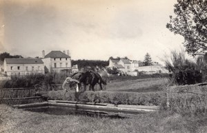 Saumur Military French Horse Instantaneous Photo 1912