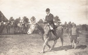 Cow Rider Saumur Military French Horse old Photo 1912