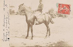Marseille Military French Horse old Photo postcard 1909