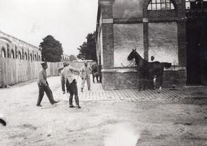 Veterinary Hospital Horses WWI Military scene war Photo