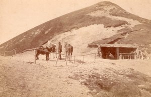 France Pic de Sancy Horses Donkeys old Photo CC 1880'