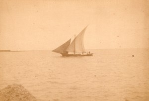 Algeria Alger Port Fish SailBoat old Photo 1890'