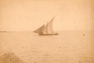 Algeria Alger Port Fish SailBoat old Photo 1890'