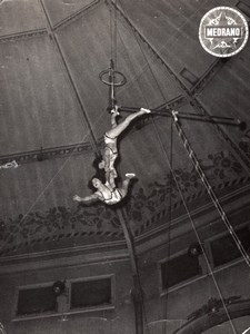 Trapezists France Medrano Circus Old Dannes Photo 1950