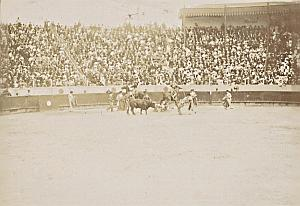 Spain Tauromachy Bull Fighting Corrida Arena Photo 1890