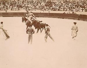 Picador Tauromachy BullFight Corrida Arena Photo 1890