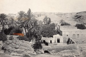 Algeria Bou Saada Oasis Scene old Photo Prouho 1930