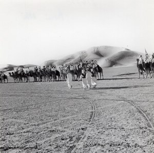 Military Camel Troop Beni Abbes Algeria old Photo 1940