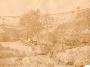 Tozeur Oasis Tunisia old Garrigues Photo 1880