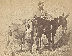 Nice Study of Man with Donkeys France old Photo ca 1865