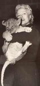 Isa Miranda & Lion Circus France Old Press Photo 1955