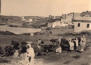 Essaouira Donkey Wood Market Morocco old Photo 1920