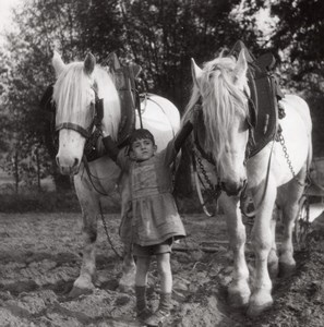 Young Farmworker Horses France Old Seeberger Photo 1930