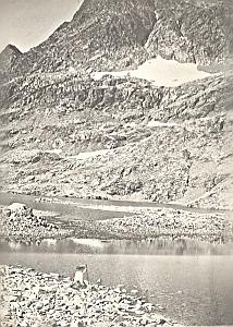 Lac Crupillouse Lake Alpes Alps Mountain Photo 1900