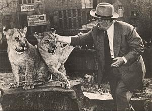 Lions & Man Circus Wild Life Zoo Old Photo 1950